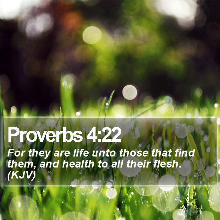 Daily Bible Verse - Proverbs 4:22 | Proverbs 4:22 For they a… | Flickr