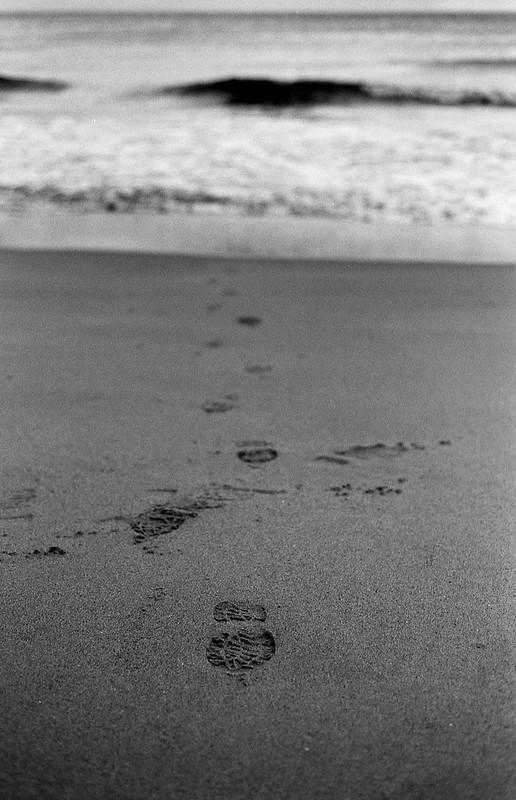 FILM - Stranger on the shore