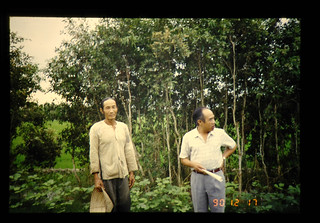 Agriculture And Forestry In Vietnam = ベトナムの農林業