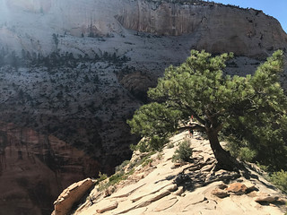 Climbing Angel's Landing at Mt. Zion | by samuelclay