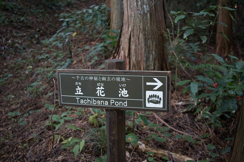 20161210-浜石岳-0387.jpg