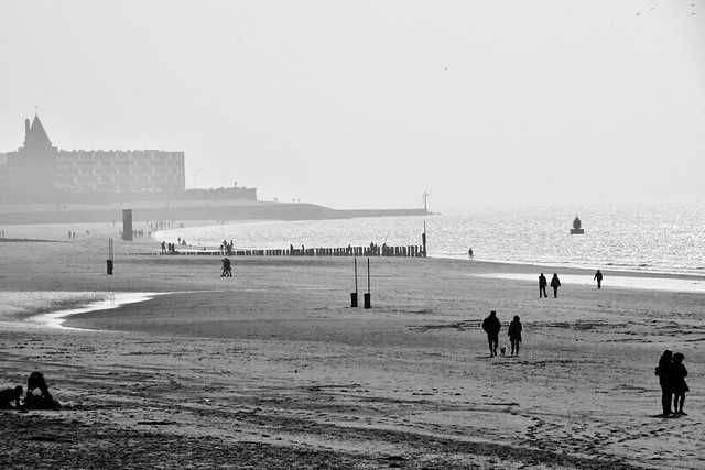 Misty Beach day....
