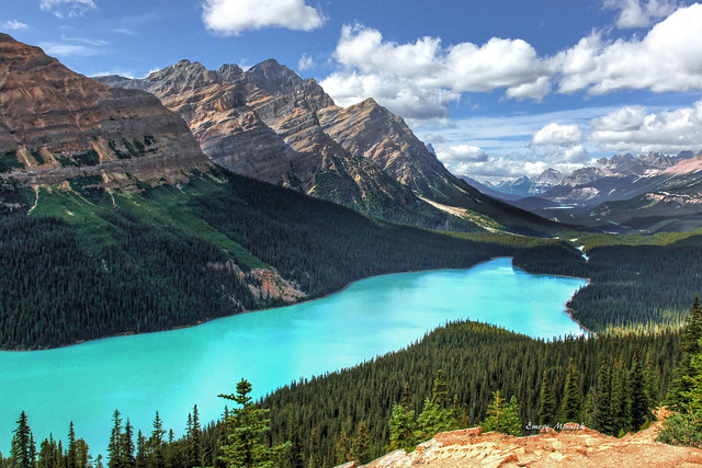 Peyto Lake from Bow Summit-Banff National Park-Alberta Canada 03014