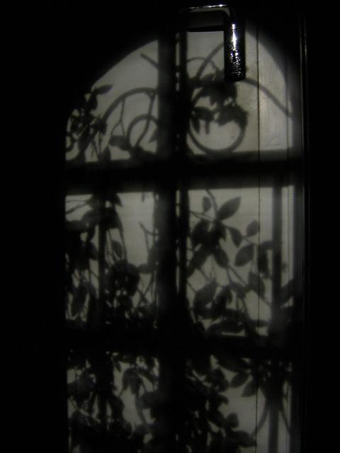 Moon shadows on a door