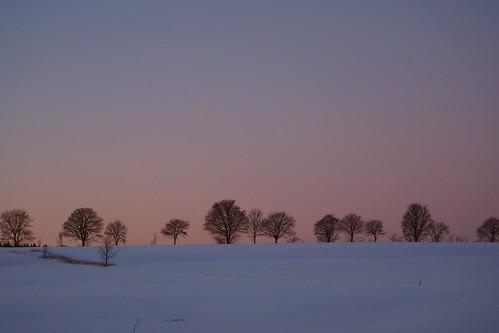 snow schnee harz sky light grass oberharz blue blau violett sunset sonnenuntergang dusk sundown