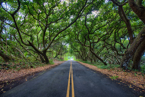 Pahoa, Hawaii Island - DSC_4312 | by peterbryan718