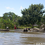 Viajefilos en la Amazonia, Peru 174
