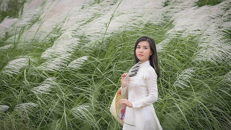 co lau duoi ga - Linh Van Dinh (1)