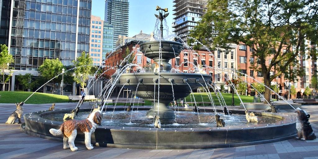 Dog Fountain Berczy Park Toronto On Excerpt From Www