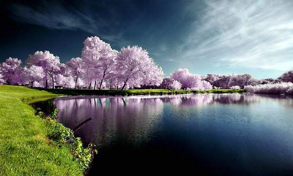 Kumpulan Gambar Pemandangan Indah Di Dunia Via Blogger Ift Flickr