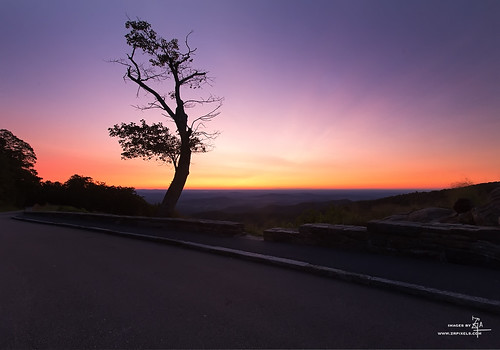 Skyline drive, Shenandoah National Park | by Z!@