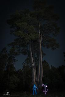 PINO DE LAS 4 GARRAS LIGHTMAN Y PLANTAS. BONICHES .PLANTS TREES