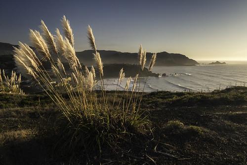 moripoint california pacifica nikon sea coastline