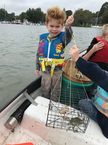 Photo of young boy holding a blue crab in a trap