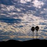 Sky in Burbank CA - Commute #8