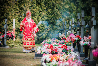 Новгородская епархия 260
