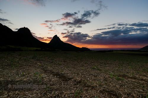 mauritius landscape sunset troismamelles westcoast fields sugarcane rempartmountain places mountains plaineswilhemsdistrict mu