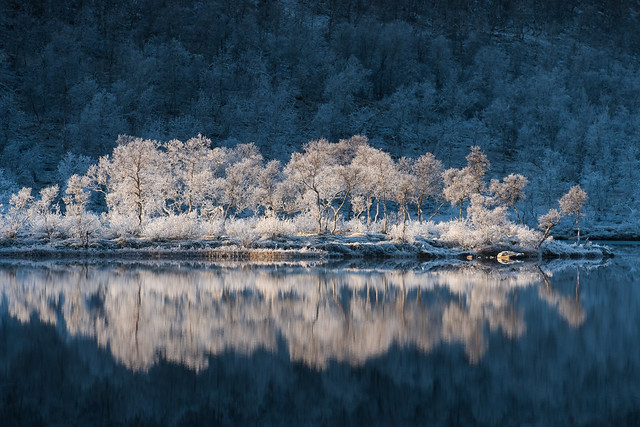 Frost and reflections.