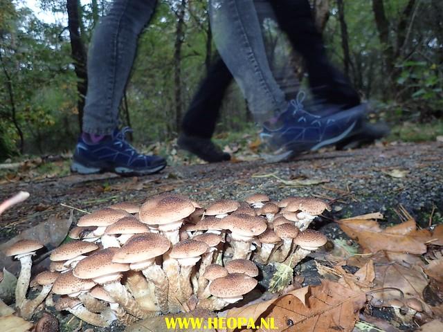 2017-10-07 Austerlitz 25 Km (23)