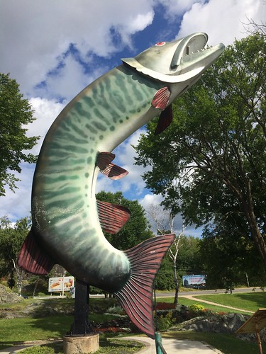 Kenora Huskie the Muskie | by Pierre Yeremian