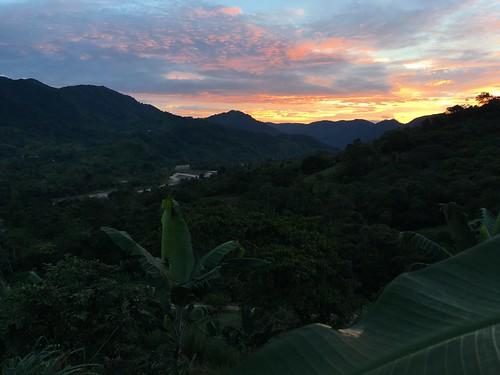 permtree ecuador landscape valledelasluciérnagas