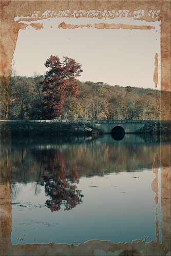 harrimanstatepark nature dawn city sunrise 2016 unitedstates newyork landscape southfields us