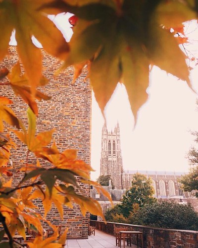 We're seeing more and more #dukefall color on campus.