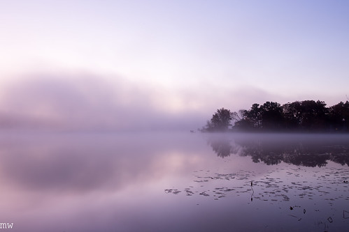 freemanlake northchelmsford fog lake crystallake lilypad sky dawn purple