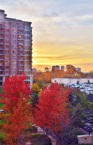 sunrise northyork toronto ontario canada fall autumn seasons groupecharlietitanium fallcolours