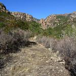 Le Chemin du Carciara aval (HR21)