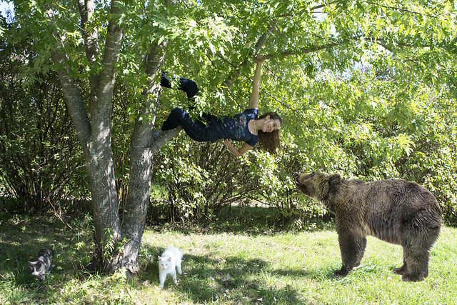Climbing with Bear