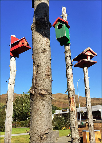 BirdHouses | by viajarMOTO