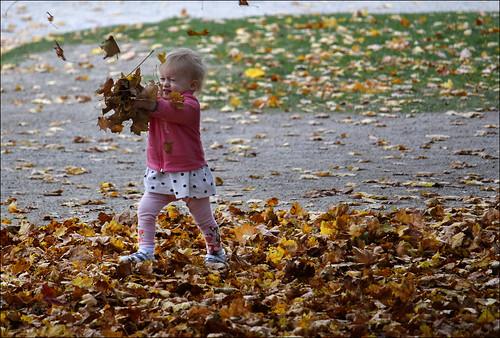 Vive l'automne! (111/365)