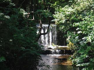 Hitchin Waterfall (the millstream overflow) SWC Walk 234 Hitchin Circular