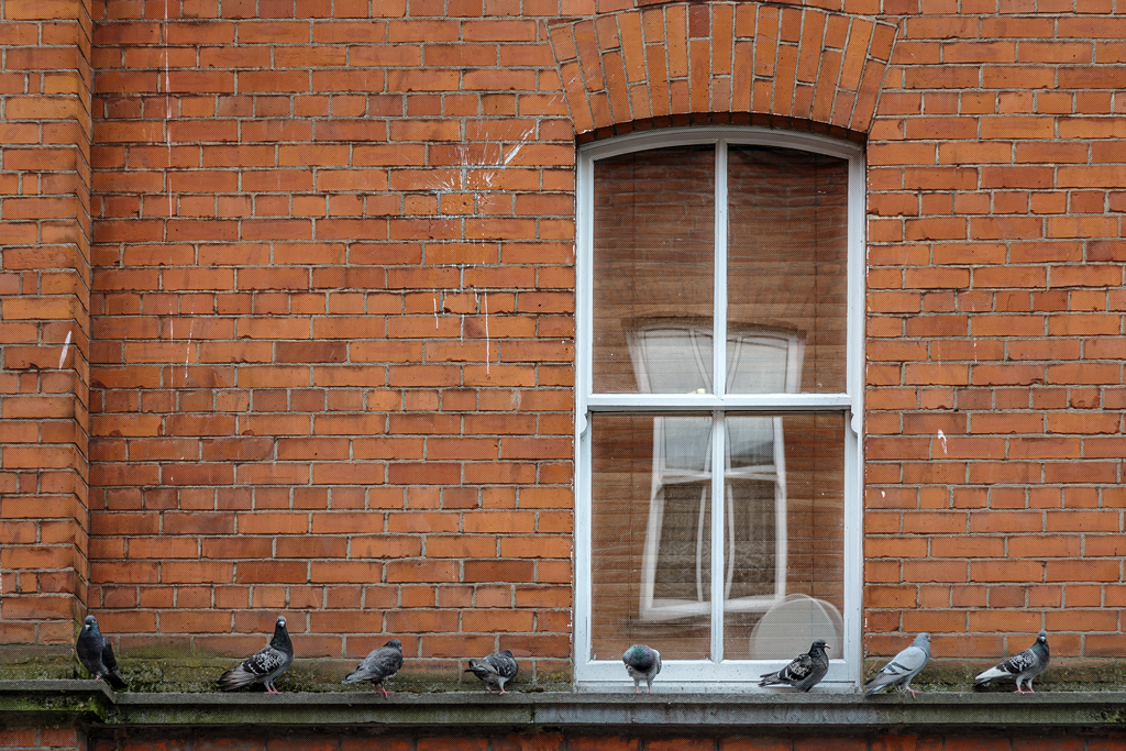Picture of a red brick victorian from somewhere in Dublin, Ireland