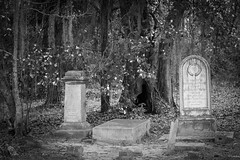 Sheldon's Church Graves