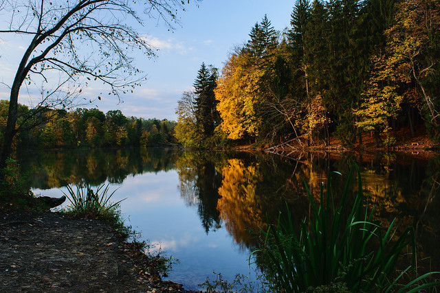 Autumn at Peters Lake