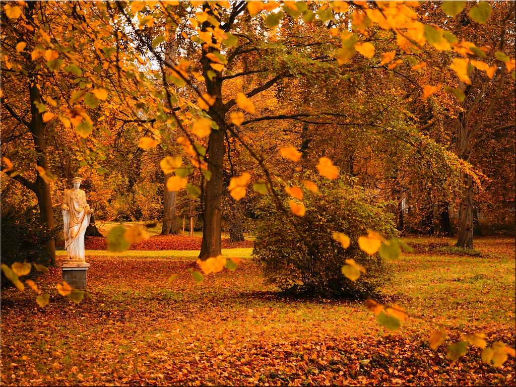 Autumn in the Eutin Castle Park