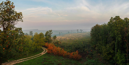 borsodabaújzemplén hungary hu magyarország autumn panorama canon 1855 landscape landscapes outdoor photography nature countryside morning vibes field sky sunrise viewpoint lookout wood mountain forest tree road brown autumnpanorama autumnvibes earlyautumn csaszta