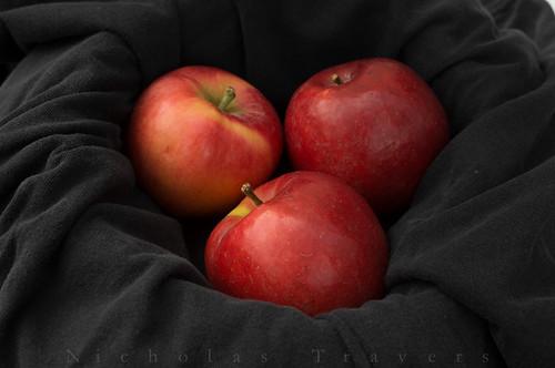 1015_NicholasTravers_some Produce_01656   by Nicholas Travers