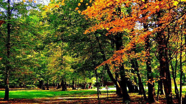 Jesień.Park Pieszyce.