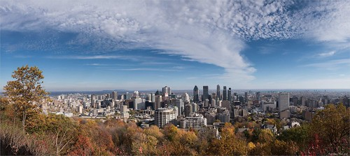 centreville grandparcsetespacepublique montréal panoramaassembler parcdumontroyal photostypedetraitement villevillagerégionetpays québec canada ca