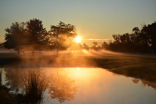 morning mist trees water landscapes sun sunrise lockportny niagaracountyny nikond5200 nature