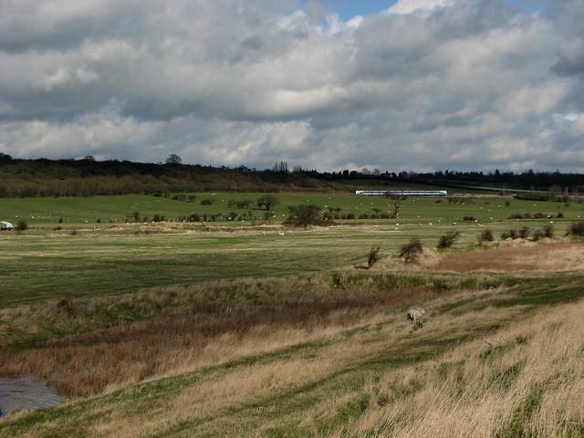 Near North Fambridge