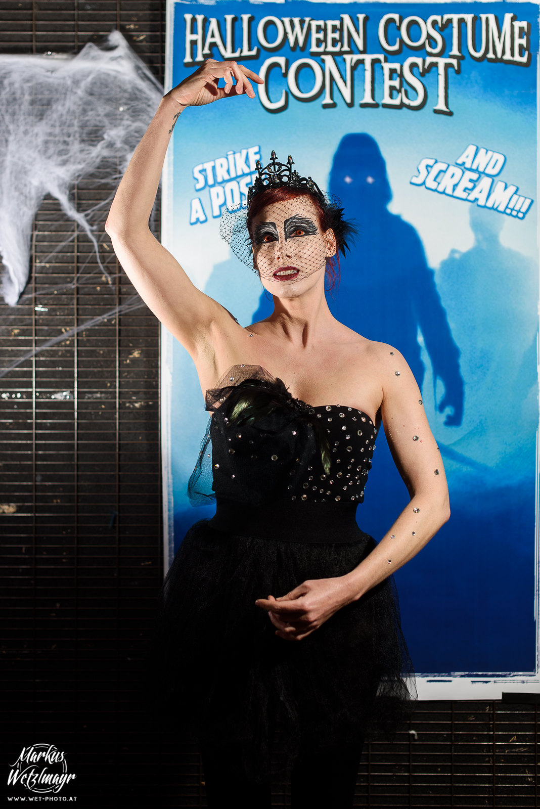 "#15 - Nicole Schamberger, ""Black Swan"" - Everyday is Halloween, 15 Years of BZFOS"