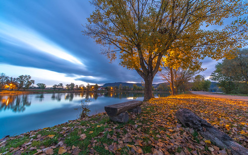 lakes lakezajarki sunrise jezerozajarki jezera zaprešić trees autumn autumncolours autumnmorning vladoferencic hrvatska vladimirferencic croatia nikond600 sigma12244556