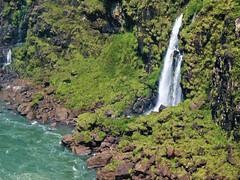 A Small One in Iguassu Falls