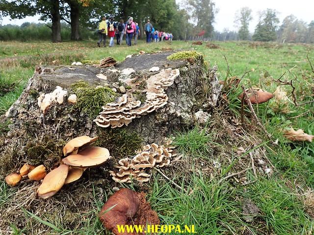 2017-10-18  Rhenen 25 Km (88)