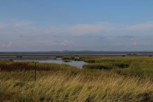 Cuxhaven-Arensch-September-2017_036 | by Stilkollektiv