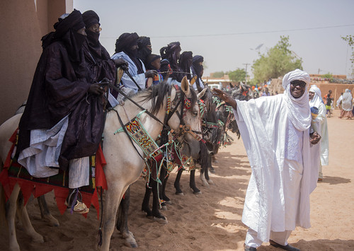 niger touareg horses agadez